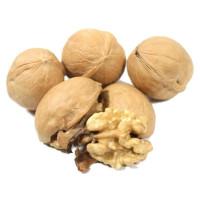 Грецкий орех в скорлупе - 500гр