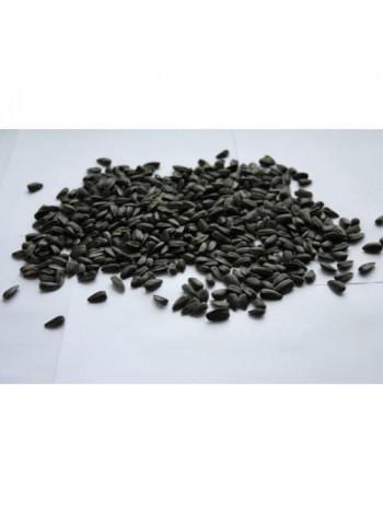 Семечки подсолнечника (черные, сырые) - 1кг