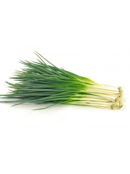 Лук зеленый - 200 гр